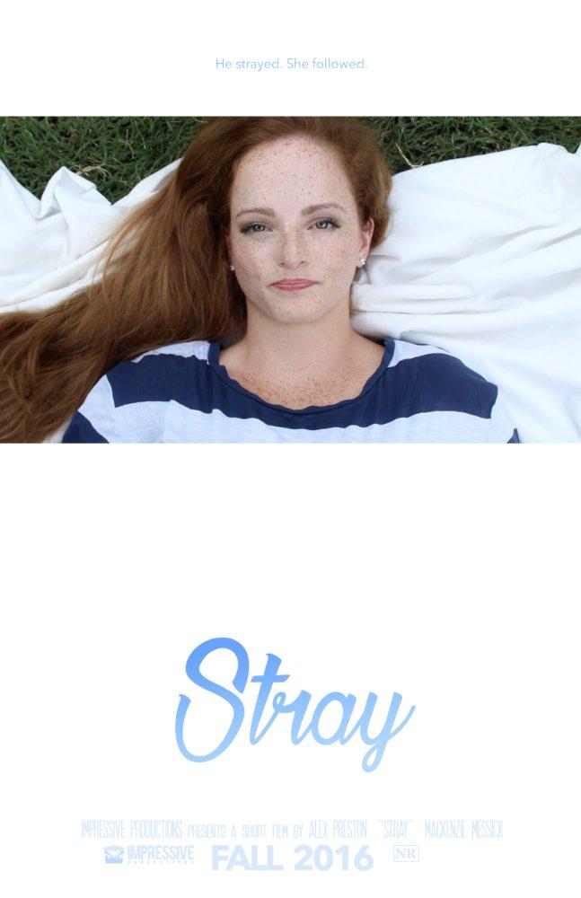 stray.jpg