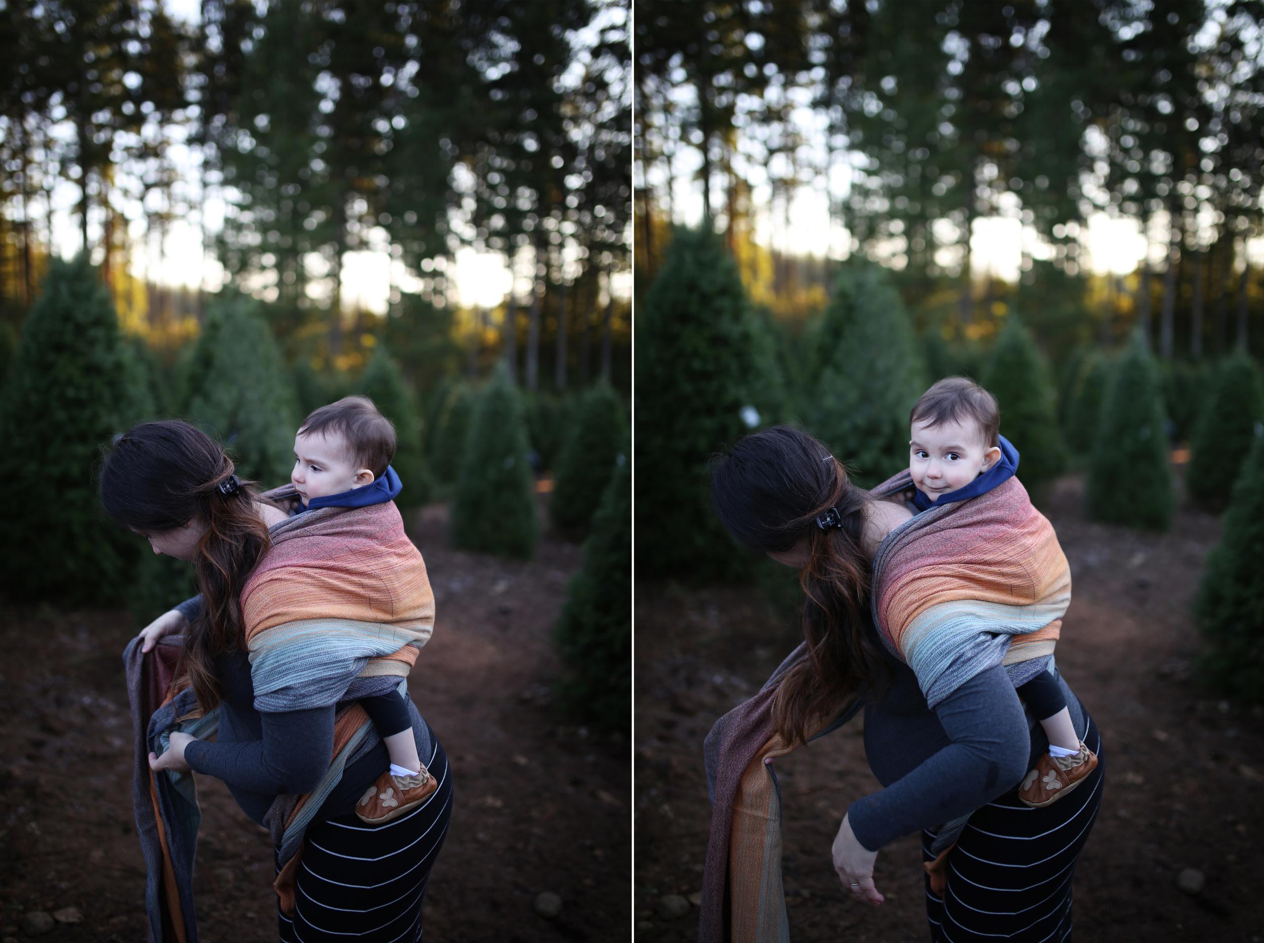 """L"" Family | Hubert's Tree Farm"