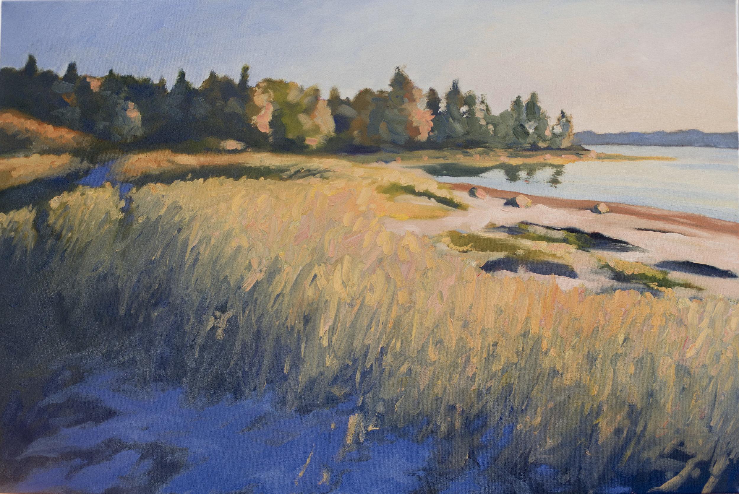 Louds Island Meadow