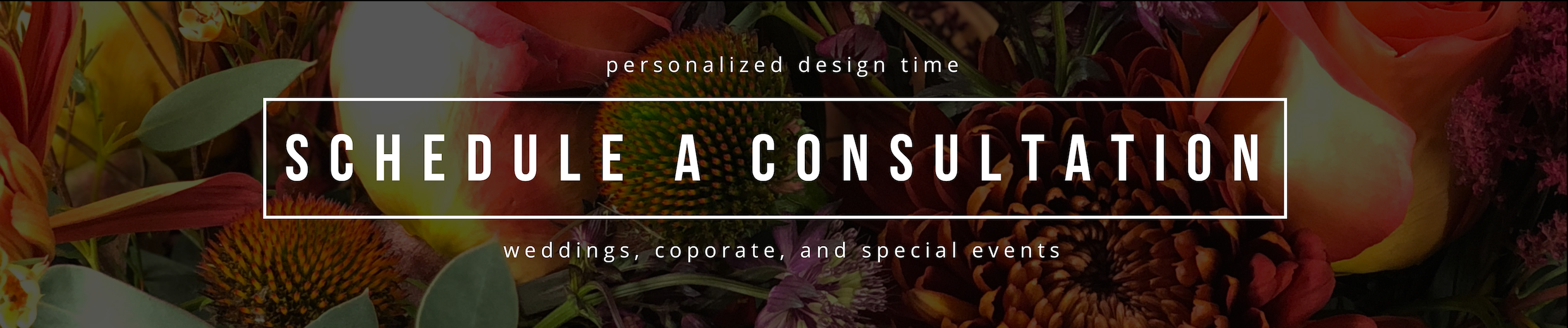 Schedule a consultation (1).png