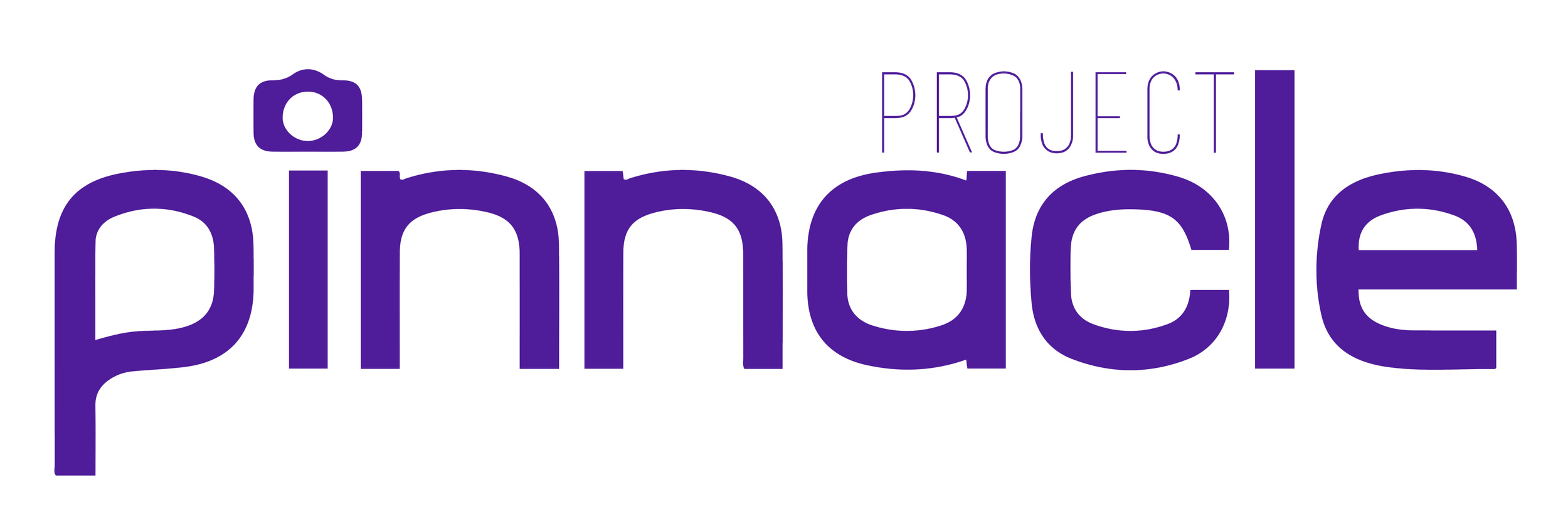 Logo Design for Project Pinnacle, part of SCAPE Accelerator