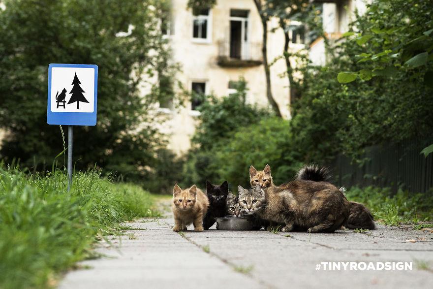 Tiny road signs, segnali stradali per animali che sono una forma di street-art, LithuaniaTiny road signs, segnali stradali per animali che sono una forma di street-art, Lithuania