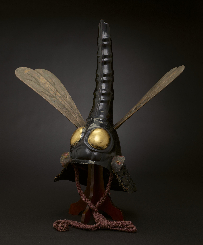 dragonfly-helmet.jpg