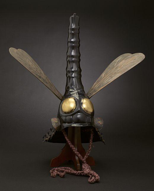 dragonfly-helmet-01.jpg