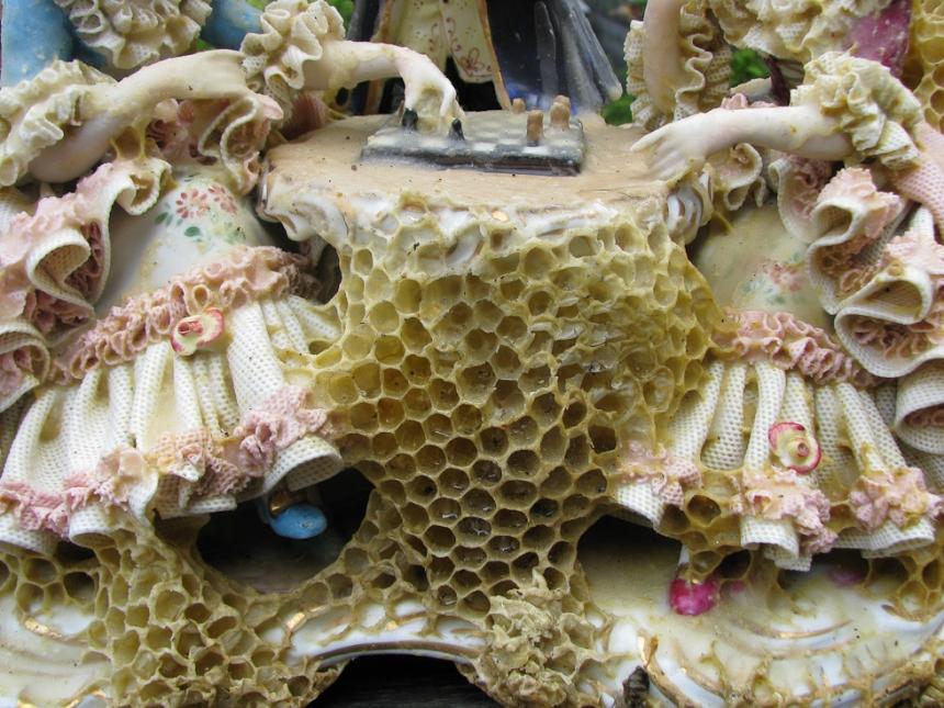 aganetha-dyck-sculture-01.jpg