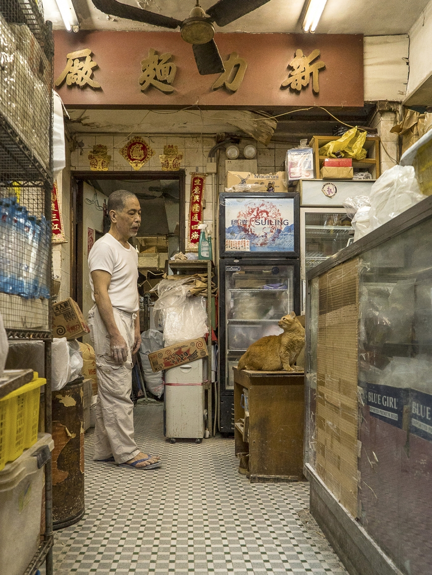 "foto: Marcel Heijnen, ""Hong Kong shop cats"""