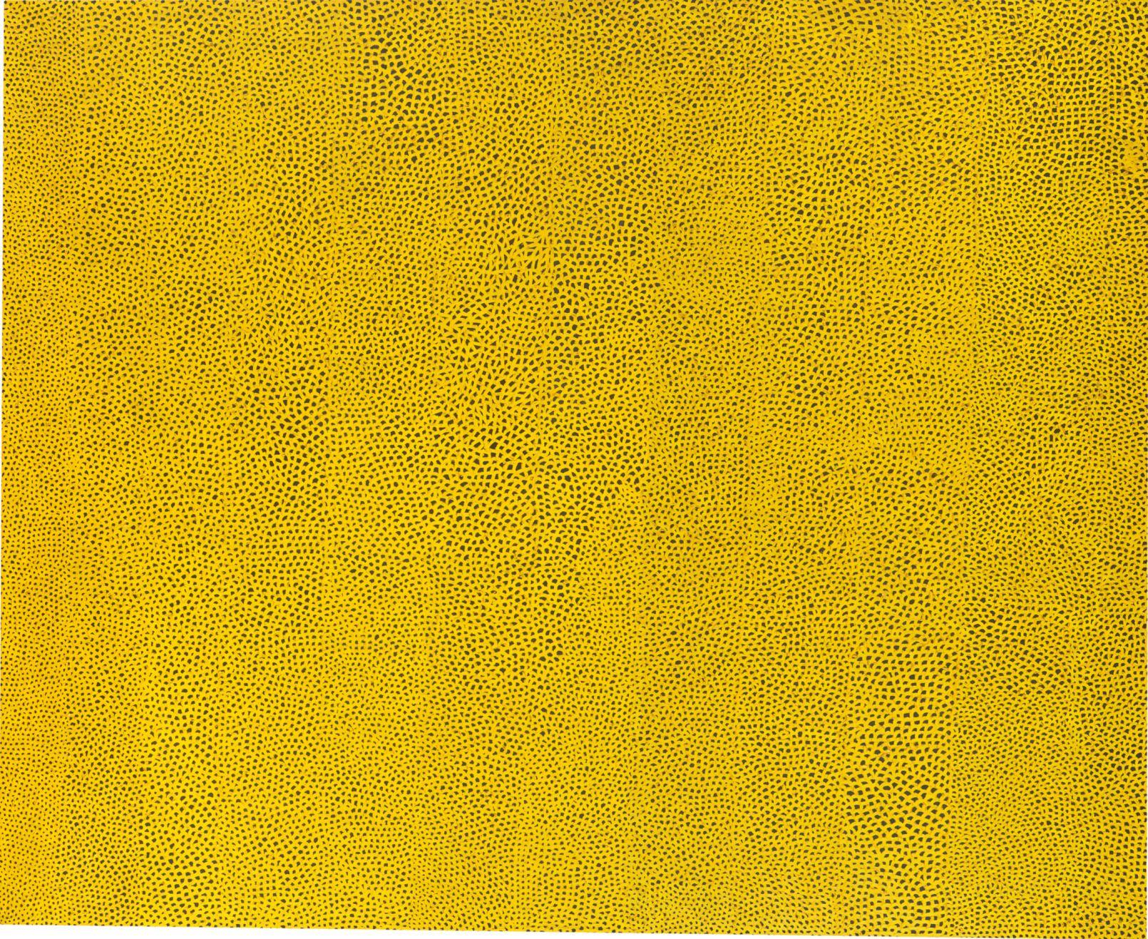 Yayoi Kusama   Infinity Nets Yellow , 1960 (Oil paint on canvas) National Gallery of Art, Washington. Gift of the Collectors Committee (2002.37.1). © Yayoi Kusama