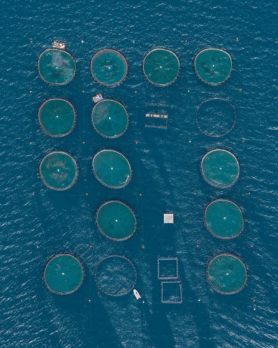 bernhard-lang-fotografia-aerea-serie-fish-farms-01