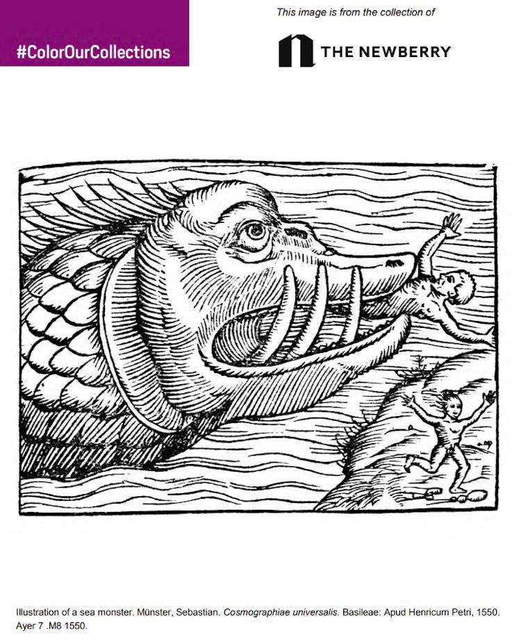 color-our-collections-libri-arte-da-colorare-per-adulti-gratis-015