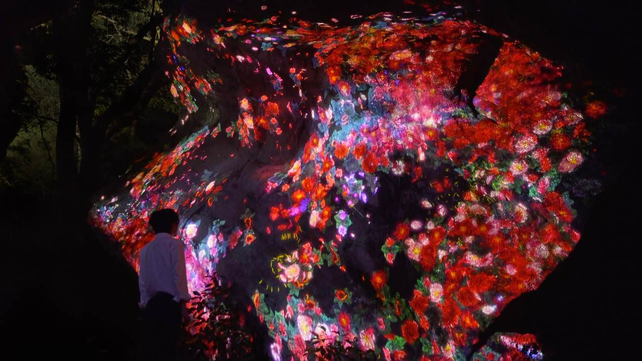 """Teamlab, """"Ever blossoming life rock"""","""