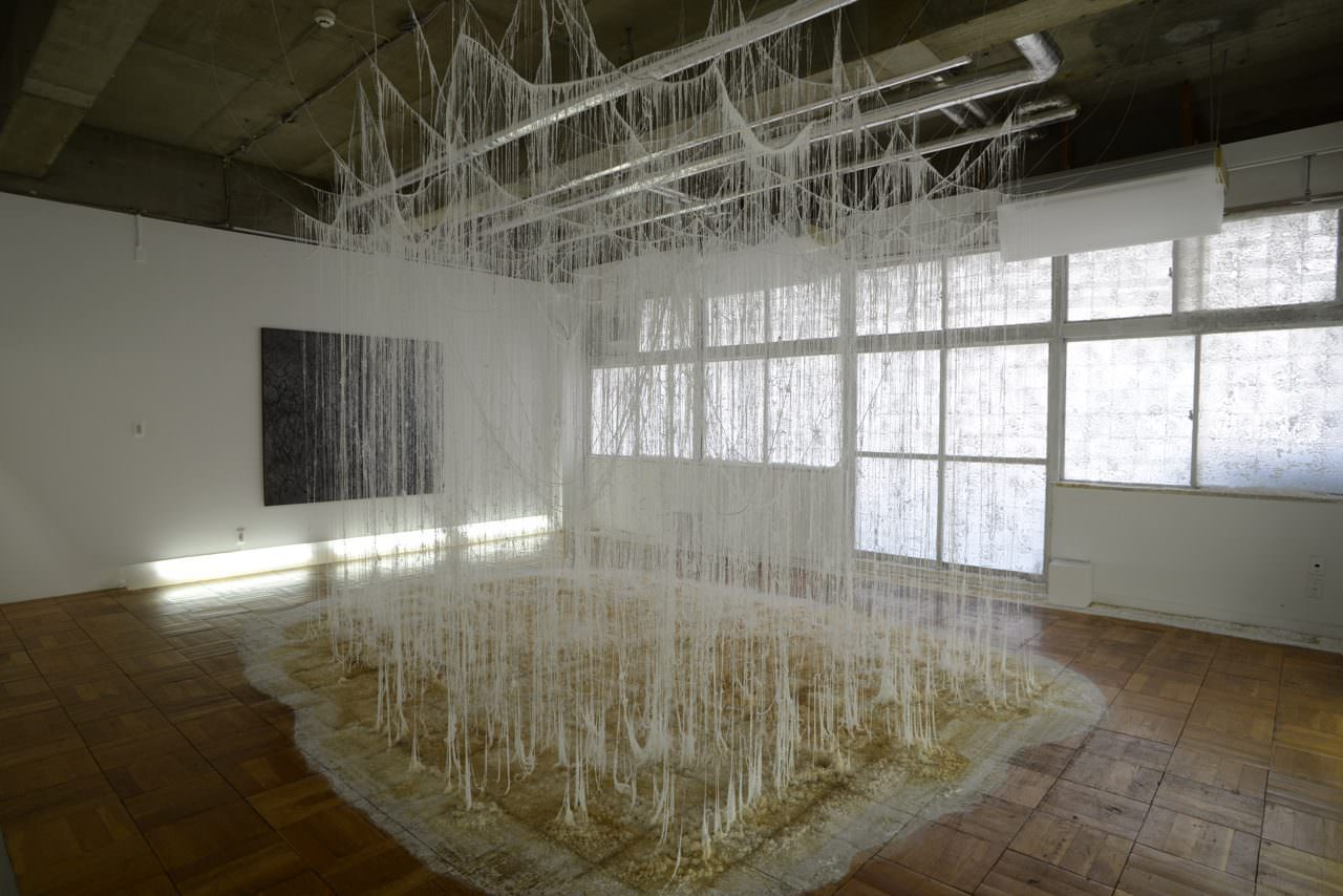 Onishi Yasuaki, 'Vertical Emptiness GOP', 2014 / h315, w553, d714cm / wire, glue, urea, other, solo exhibition / Gallery Out of Place TOKIO, Tokyo Japan