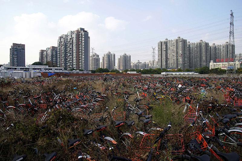 bicycle-graveyards-08.jpg