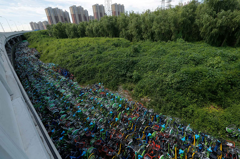 bicycle-graveyards-07.jpg
