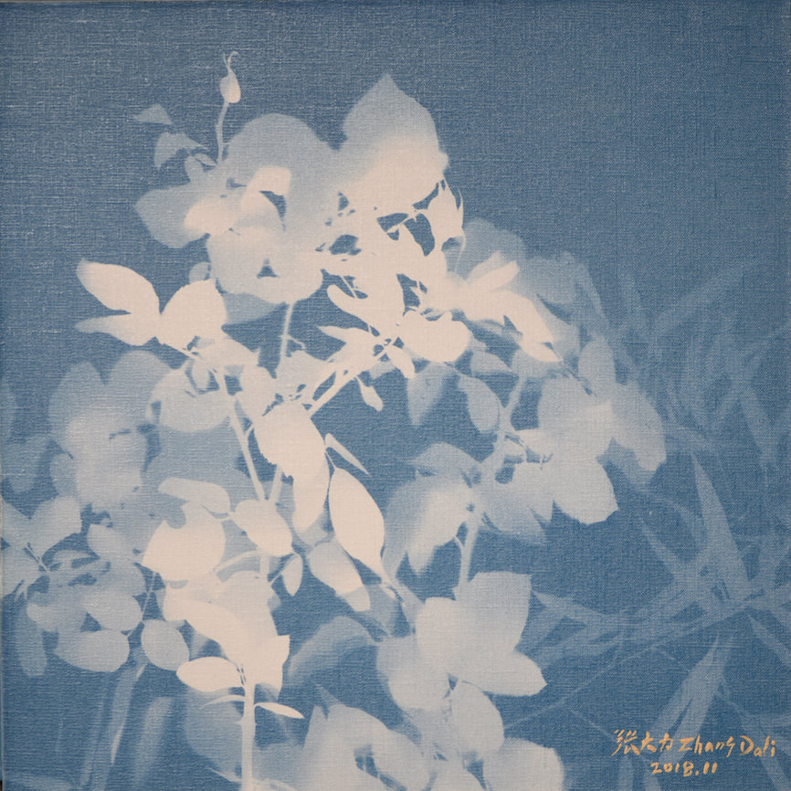 Zhang Dali, Rosa Invernale (50X50cm) Cyanotype on Canvas