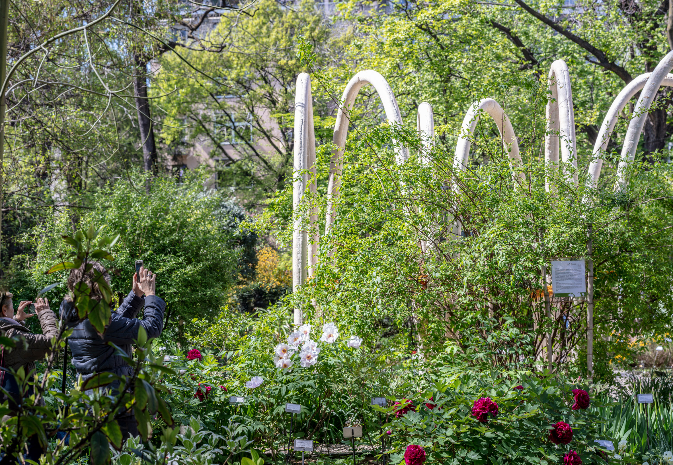 carlo-ratti-circular-garden-design_17.jpg