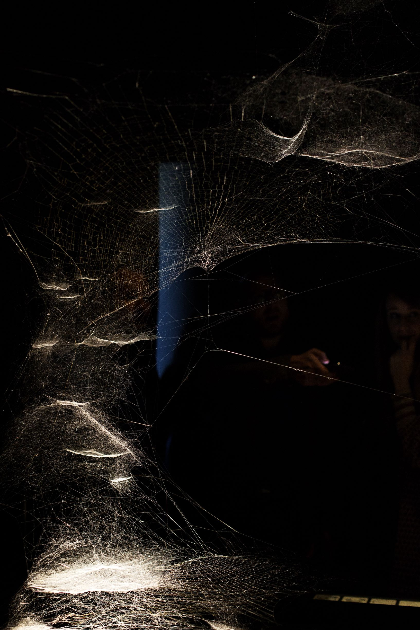 Tomás Saraceno, Spider/Web Pavilion 7: Oracle Readings, Weaving Arachnomancy, Synanthropic Futures: At-ten(t)sion to invertebrate rights!, 2019. Mixed media. Photo by: Francesco Galli. Courtesy: La Biennale di Venezia