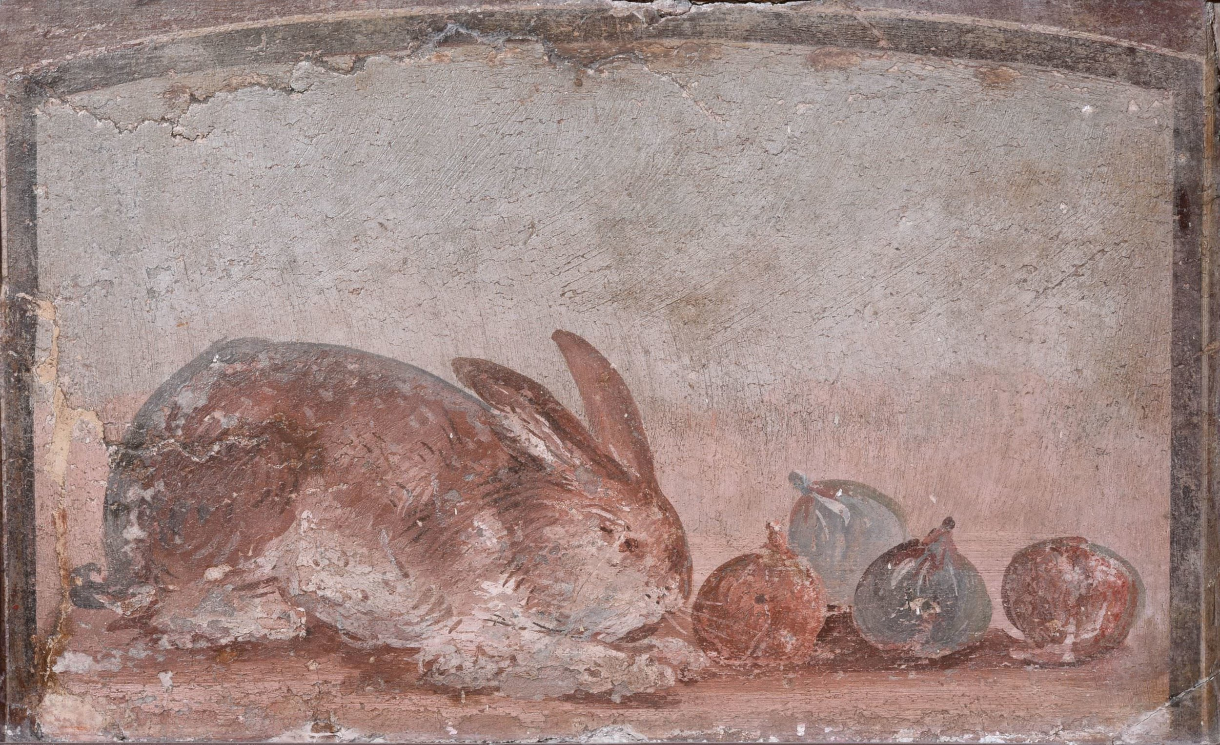 Still life wall panel fresco showing a rabbit nibbling at figs, AD 40–79. Pompeii (35 x 42 cm). Museo Archeologico Nazionale di Napoli