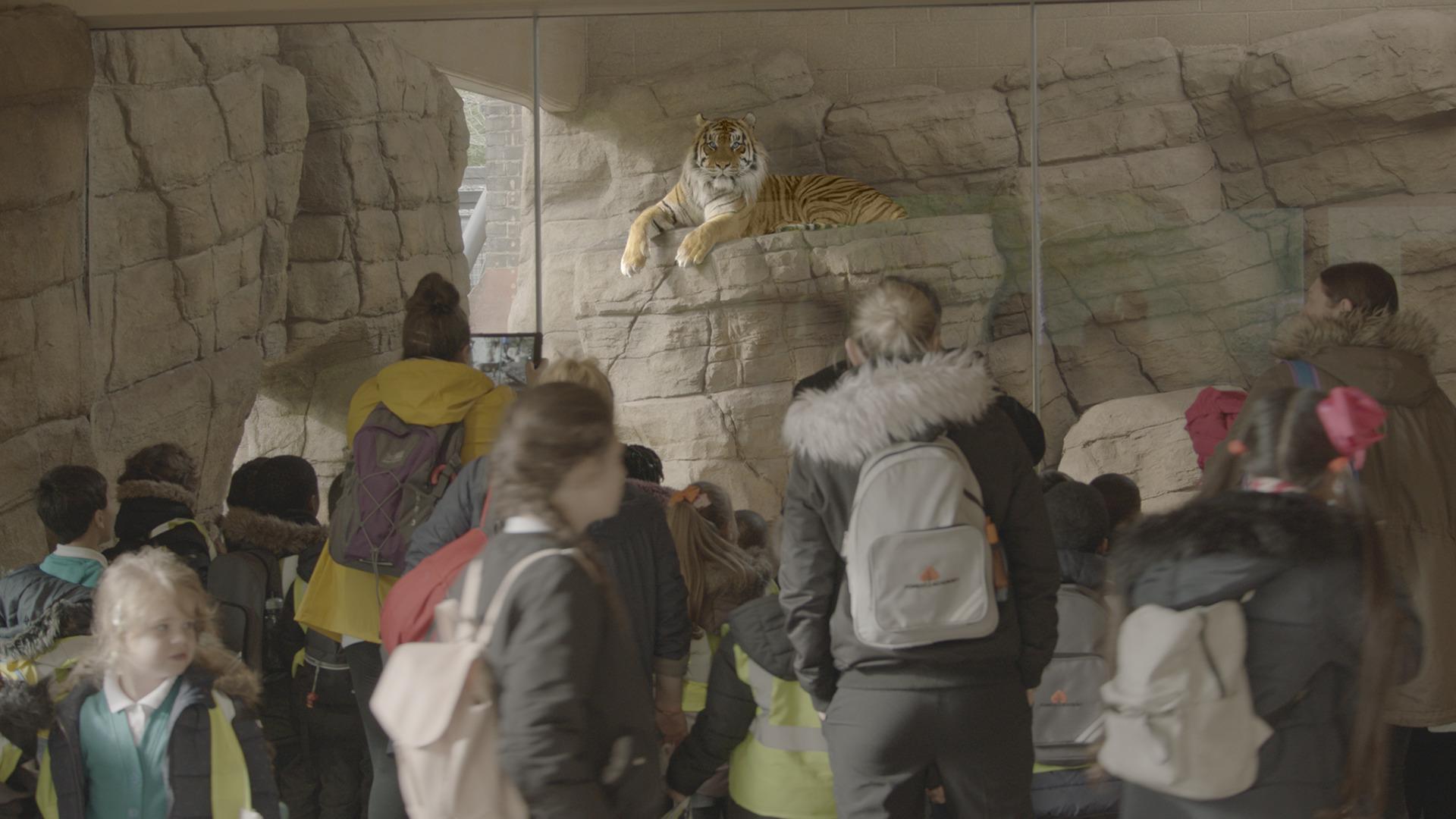 Lo zoo di Londra. Film Still