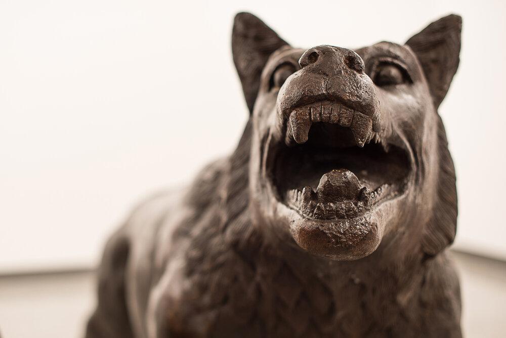 5. Liu Ruowang Wolves Coming , 2008-2010 ph. Michele Stanzione.jpg
