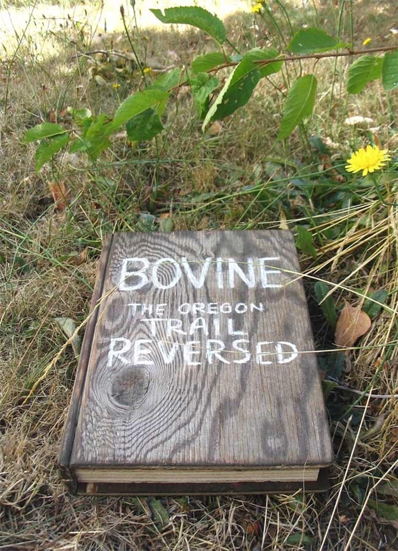 Bovine Book