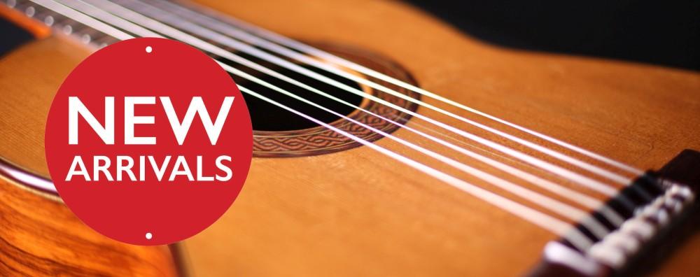 new-arrivals-guitar2-sm.jpg