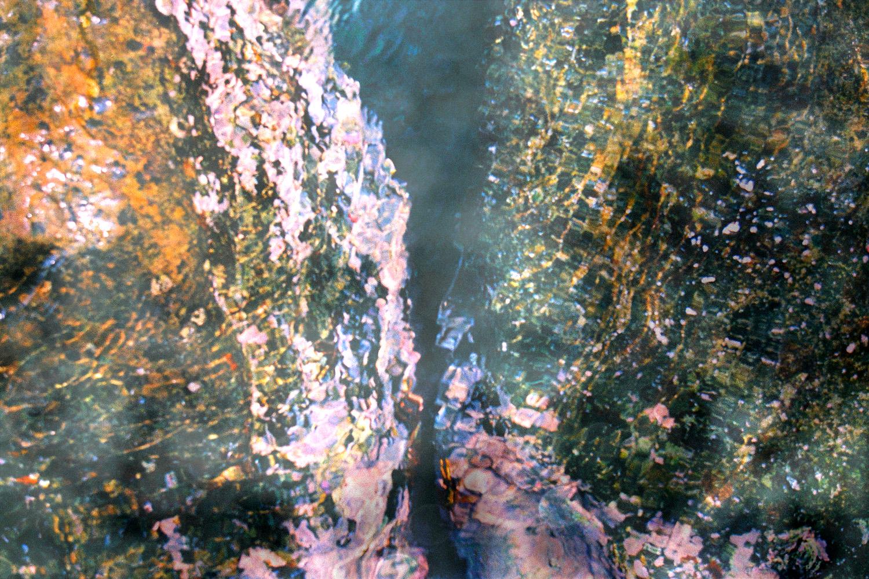 tide pool 2.jpg
