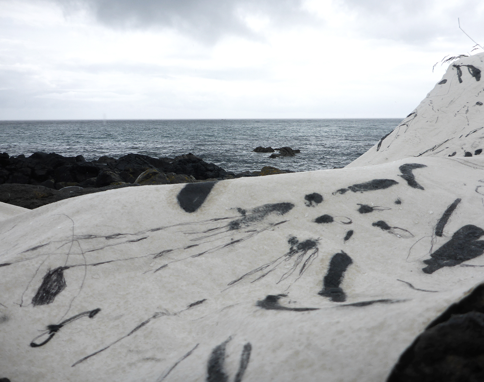 Along the Atlantic Ocean In Memory of the Pacific Ocean image 5.JPG