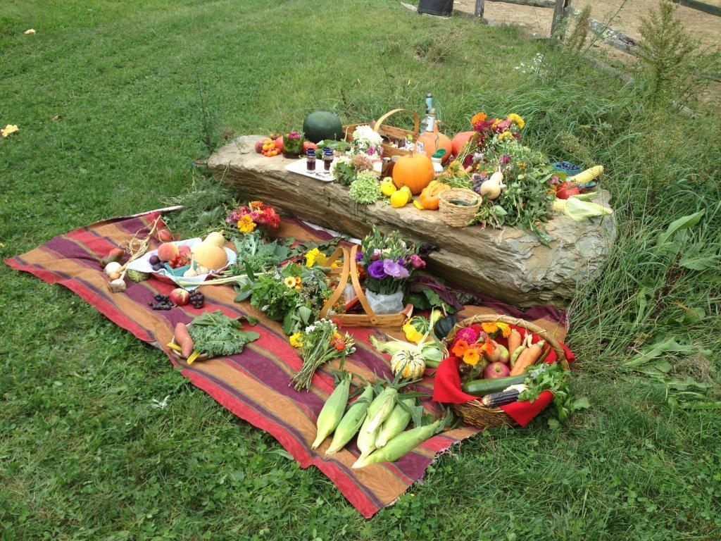 Pepperell Harvest 2012.jpg