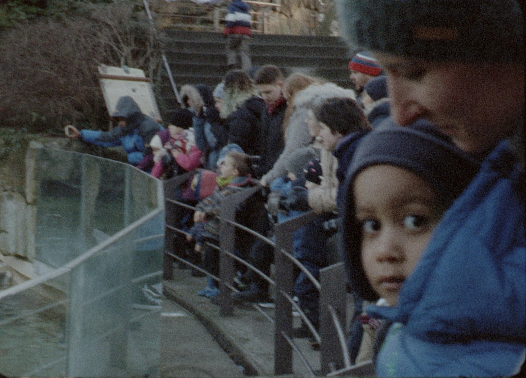 TF kid at zoo3f.jpg