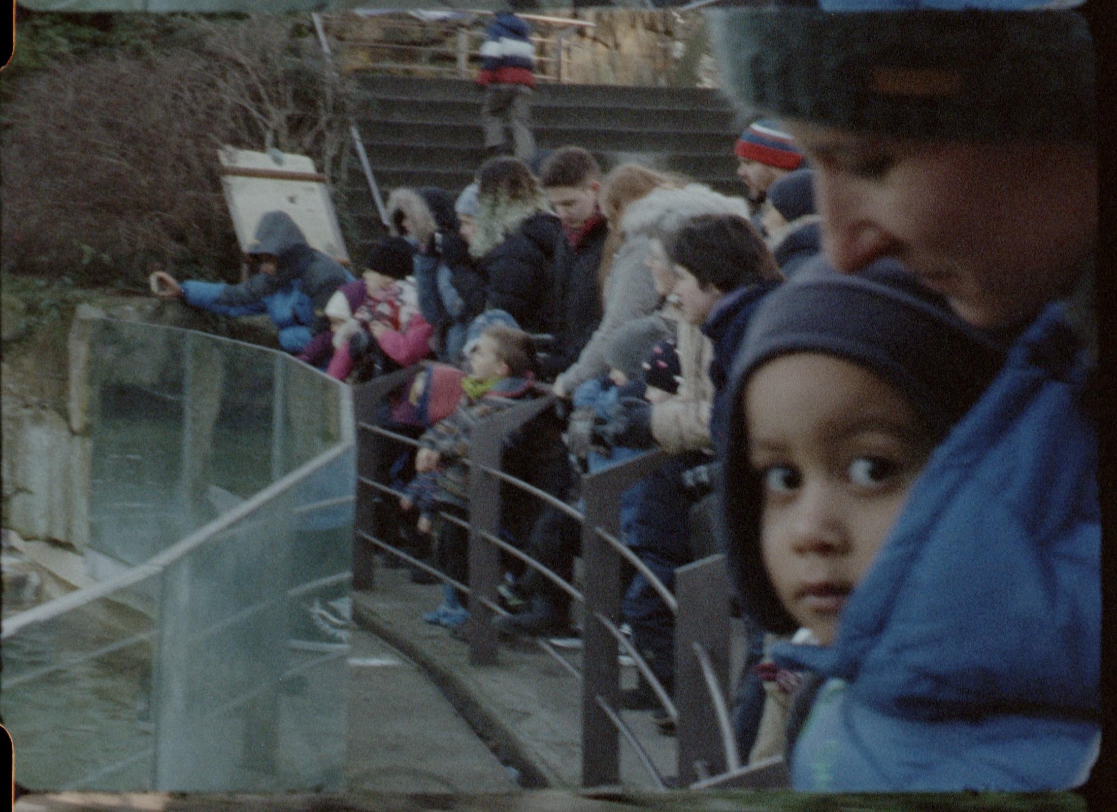 TF kid at zoo3 fullfr.jpg