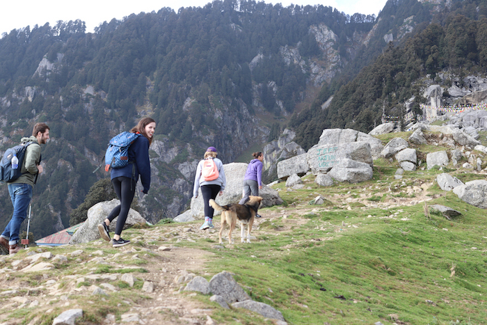 Made it to Triund!