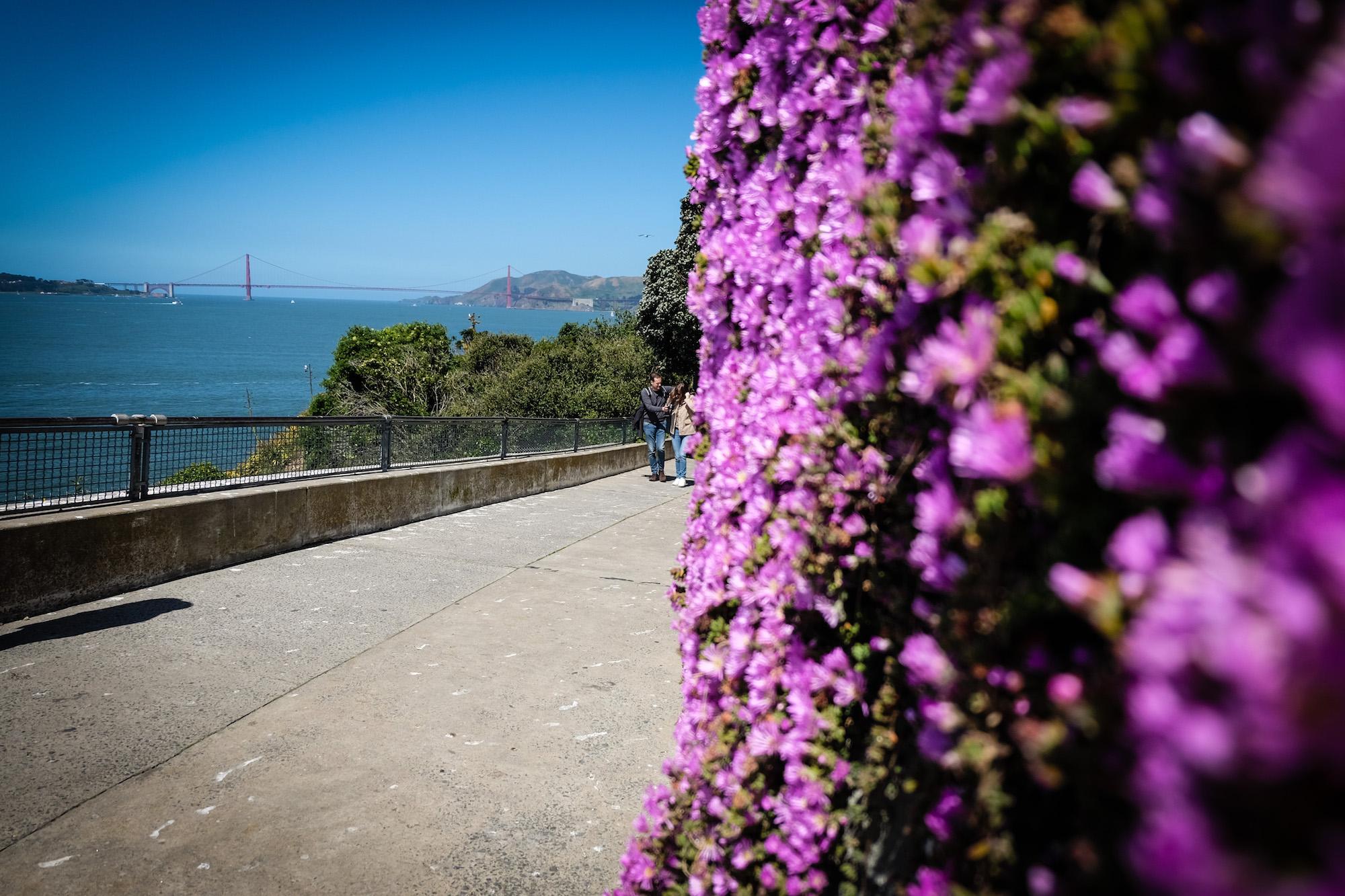 Tourist day at Alcatraz.