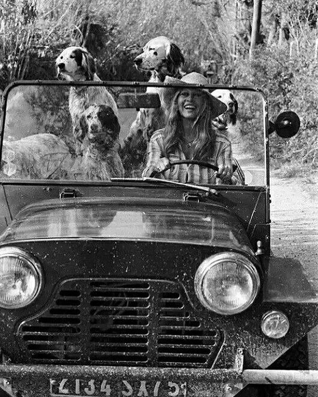 🐚Arrived In St. Tropez for our project install! 🇫🇷 A favourite of the beautiful Bardot with her dogs & Moke ! ✨ . . #sttropez #projectinstall #excitedmuch!! #interiordesigners #rivierastyle #bardot #doglovers #frenchstyle #coastalliving
