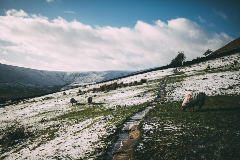 Peak-District-Derbyshire-Darina-Stoda-Norfolk-Devon-Dartmouth-Photographer-Photography-6.jpg
