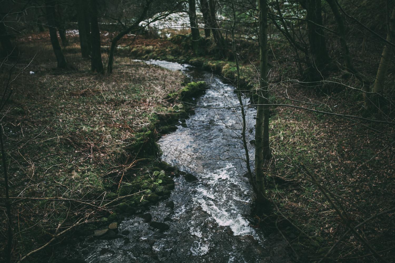 Peak-District-Derbyshire-Darina-Stoda-Norfolk-Devon-Dartmouth-Photographer-Photography-22.jpg