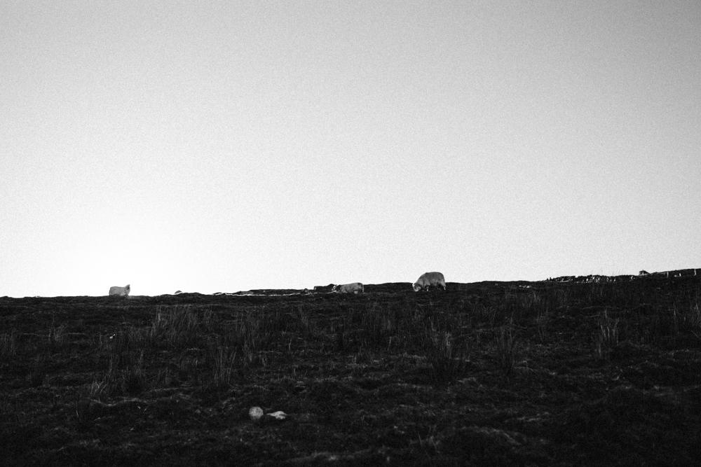 Snowdonia-Wales-Adventure-Travel-Darina-Stoda-Photography-Photographer-38.jpg