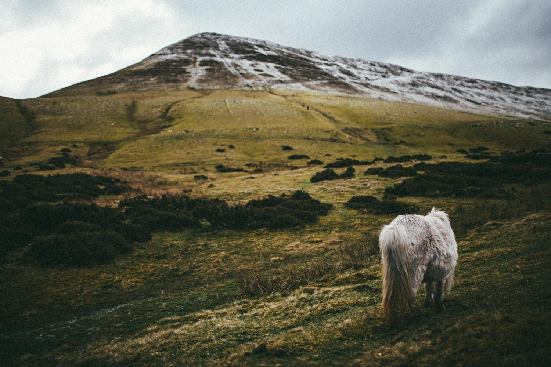 Brecon-Beacons-Wales-Travel-Photography-Photographer-Darina-Stoda-12.jpg