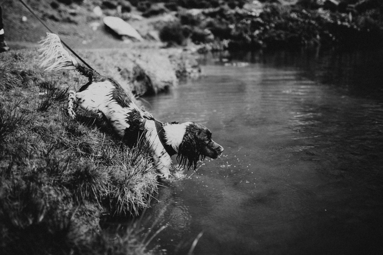 Snowdonia-Wales-Log-Cabin-Garthyfog-Darina-Stoda-Photography-3.jpg