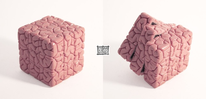 BrainCube1000.jpg