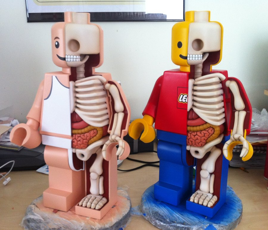 large_anatomical_lego_men_in_progress_by_freeny-d534imr.jpg