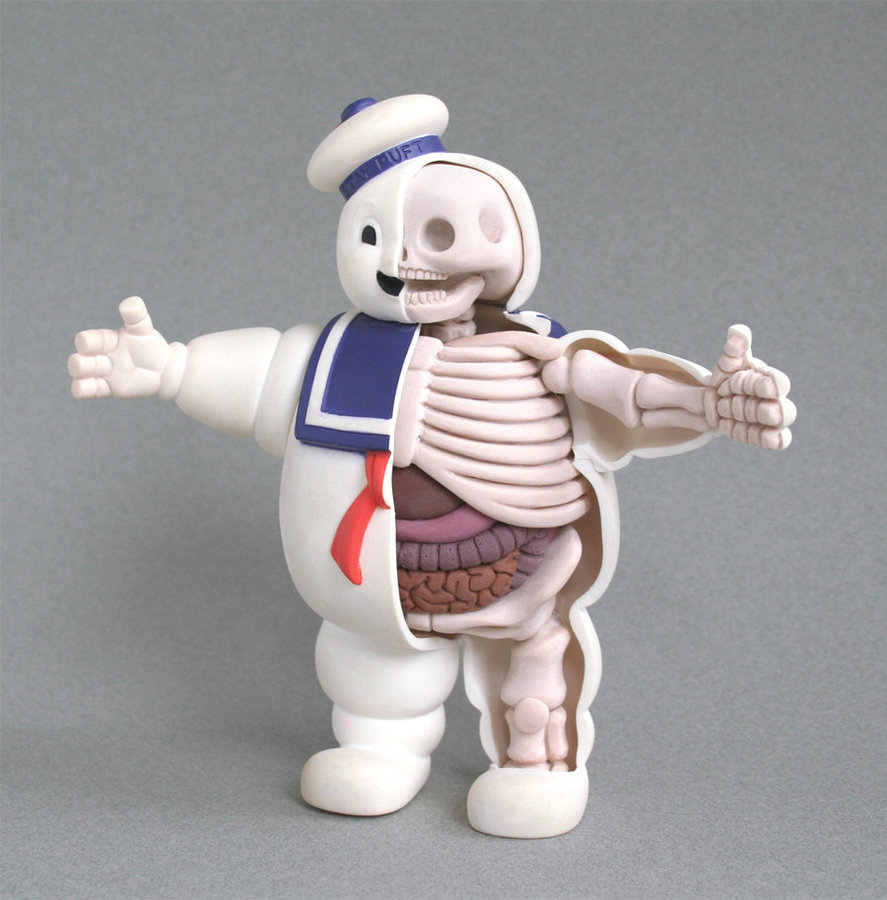 stay_puft_anatomy_sculpt_by_freeny-d2zue66.jpg