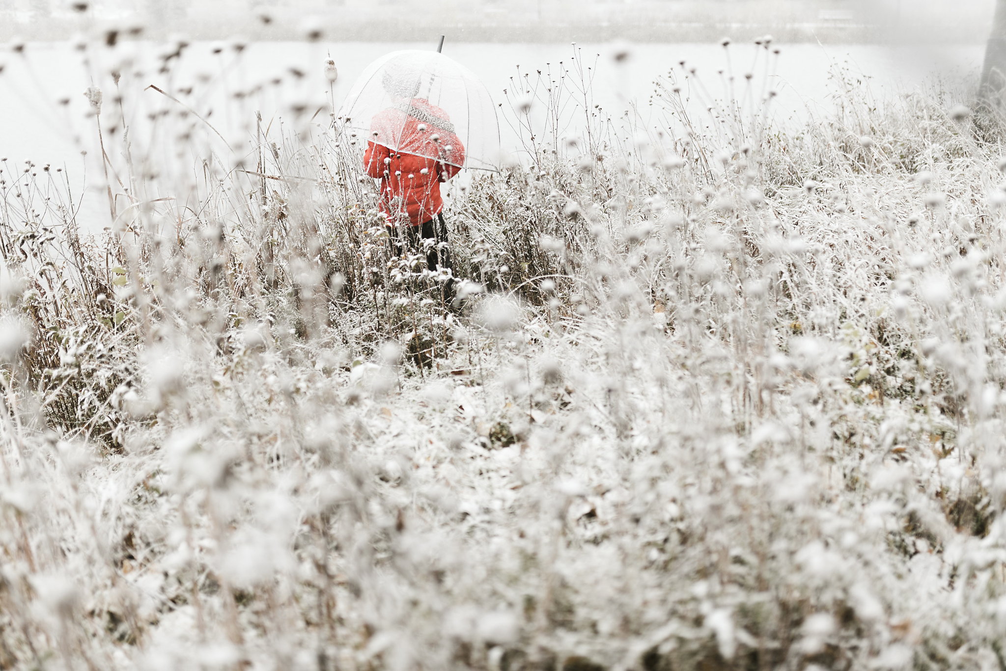 Photos in the snow | Shannon Kathleen photography