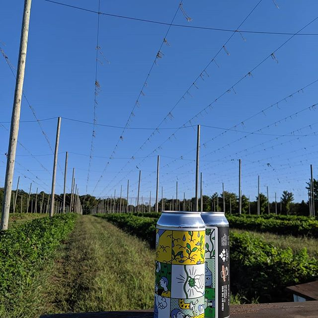 We had a great 2019 growing season and a safe and successful harvest. Time to enjoy these hops! @wellingtonbrewery @dominioncity