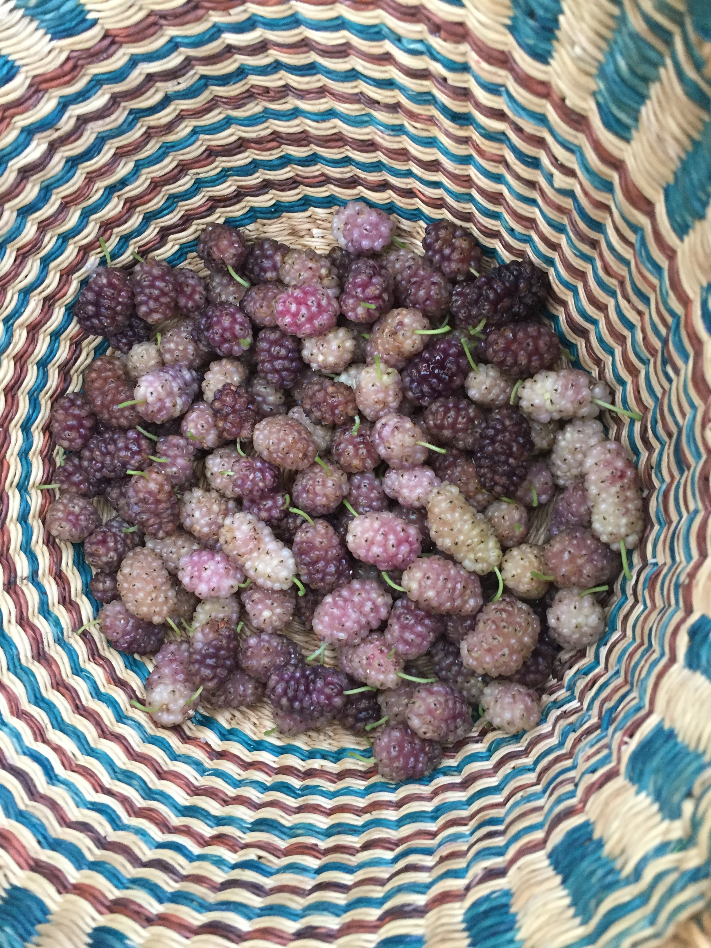Truly white berries are not very common, and will often be rather bland unless tinted pink or purple.