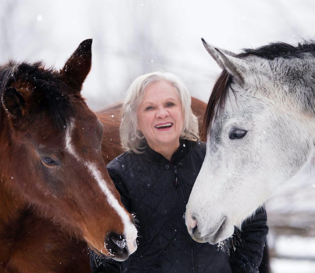 LINDA & HORSES