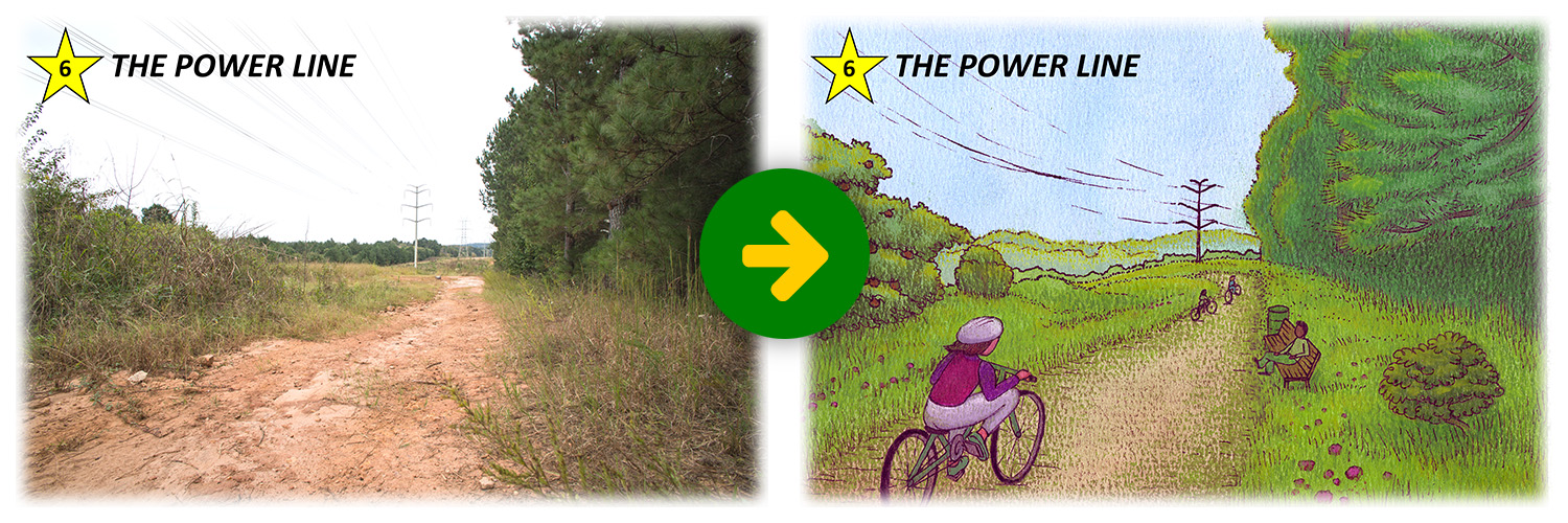 stoapf-vision-before-after-06-power-line.jpg