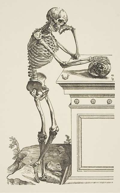 60b2b09b4147ae113acfb720ca6f89d6--andreas-vesalius-the-human-body.jpg