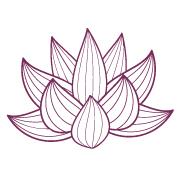 Lotus_FB-profile.jpg