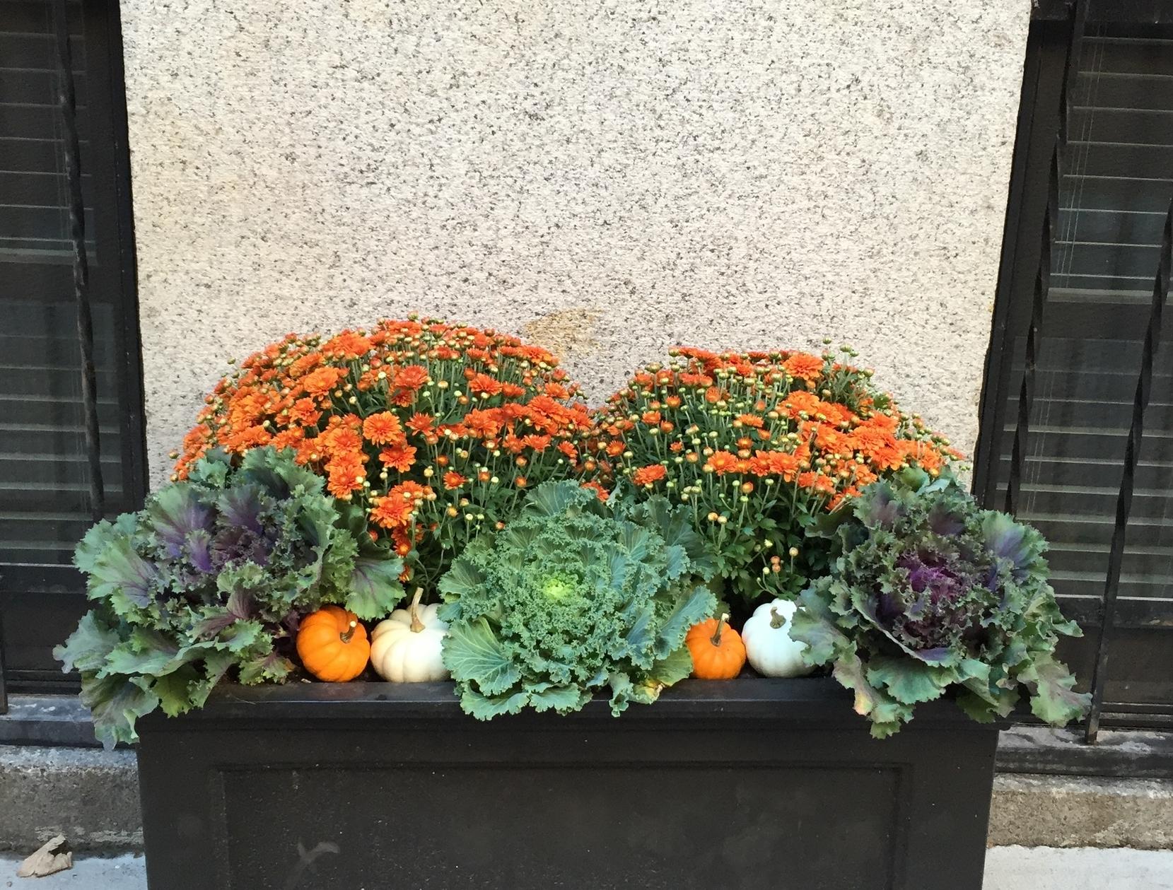 Fairfield patio planter, $190,  Wayfair .