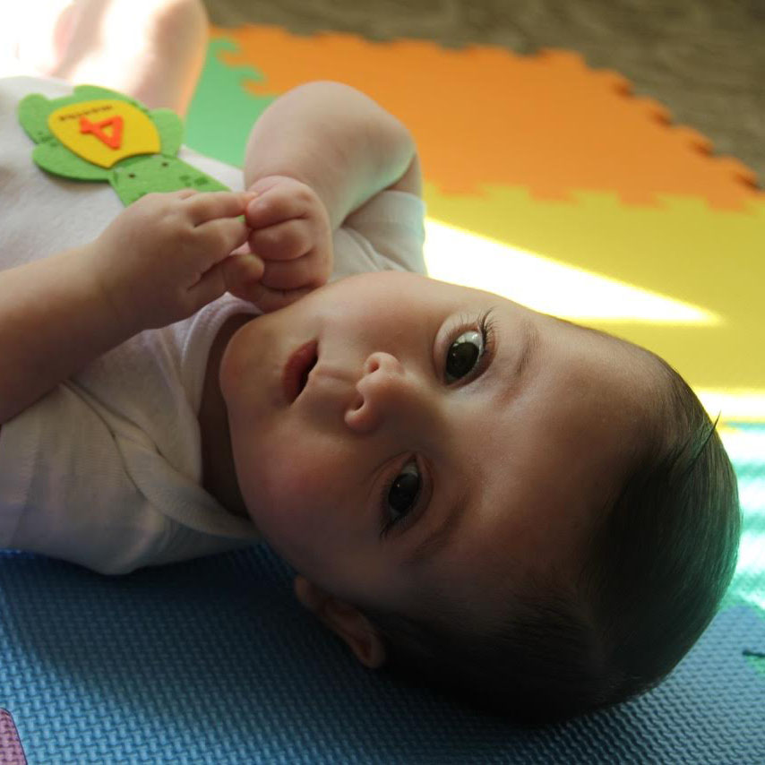 Congenital Diaphragmatic Hernia, CDH, ECMO, CDH Support